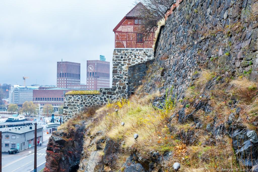 vue depuis la forteresse