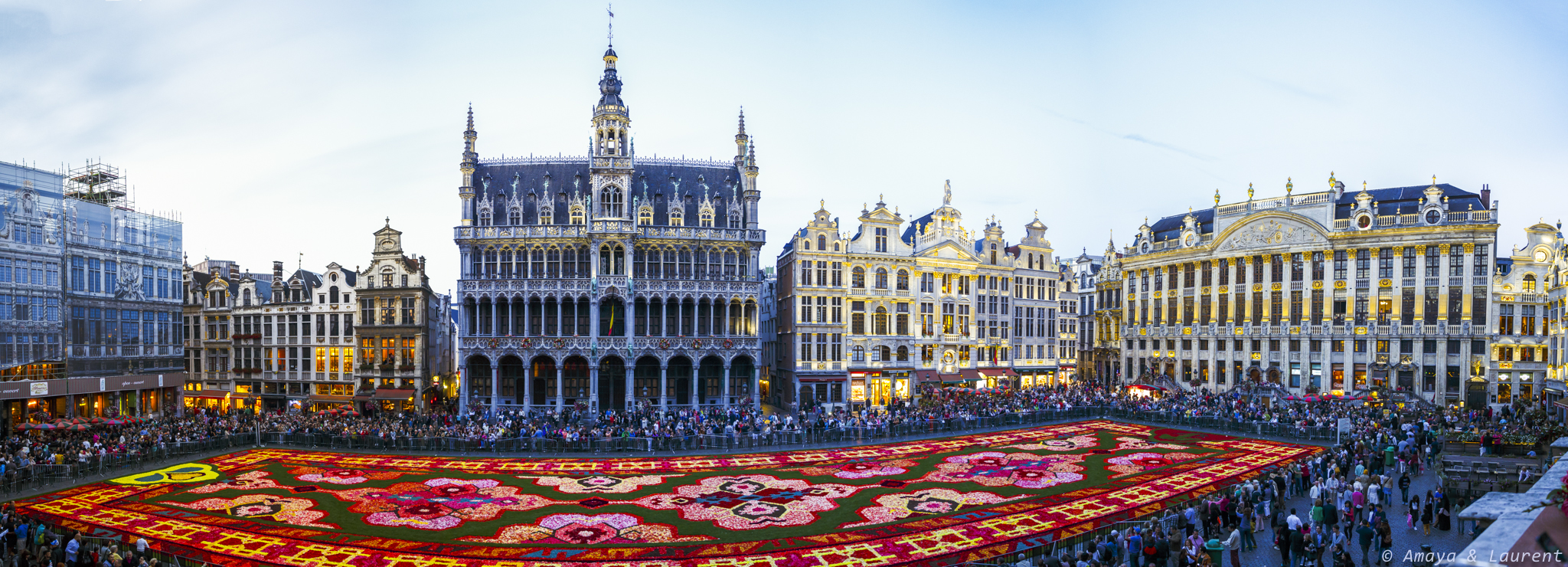 Tapis de fleurs bruxelles le monde en photo - Office de tourisme bruxelles grand place ...